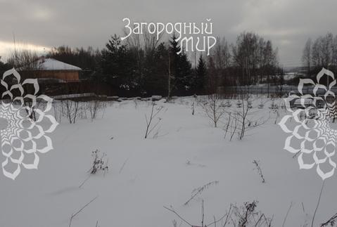 Дмитровское ш, 50 км от МКАД, Долгиниха