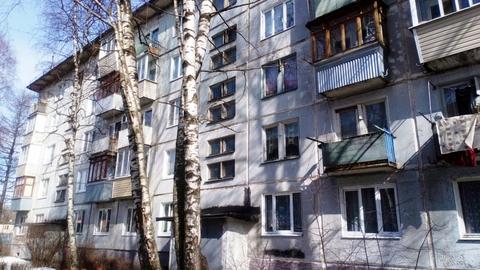 2х комнатная квартира Большое Буньково д, Новостройка ул, 16