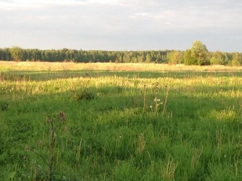 Земельный участок, деревня Домнино, 550000 руб.