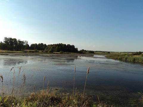 Участок на берегу озера, 15 соток, д. Сивково, 100 км от МКАД, МО.