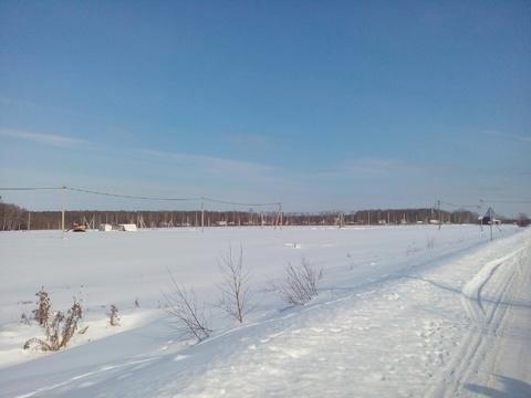 Участок 36 соток в ДНП Липитино Озерского район