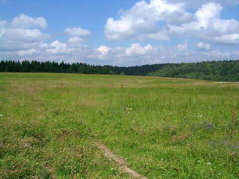 Земельный участок, 900000 руб.
