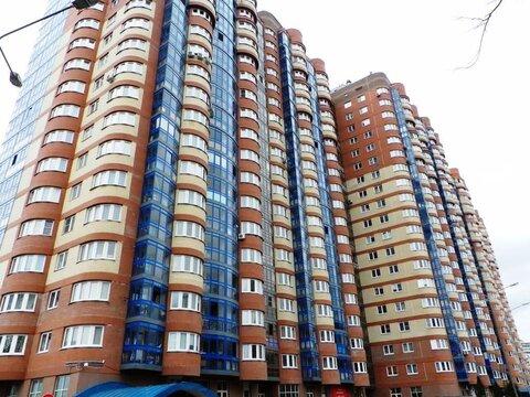 Компактная и солнечная квартира с панорамным видом
