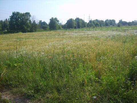Продается большой участок земли вблизи водохранилища в Рузском р.