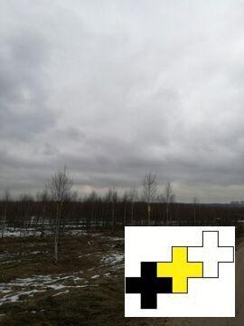 Участок 10 соток для дачи в д. Ростовцево, Солнечногорского района