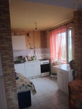 Продажа 3 комнатной квартиры в Люберцы (Комсомольский пр-кт)