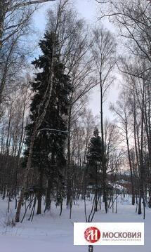 Земельный участок 60 соток в Новой Москве, кп Подолье