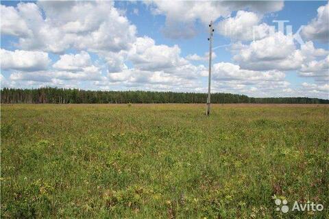Продам земельный участок 15 соток (ЛПХ), д.Ватолино, 650000 руб.