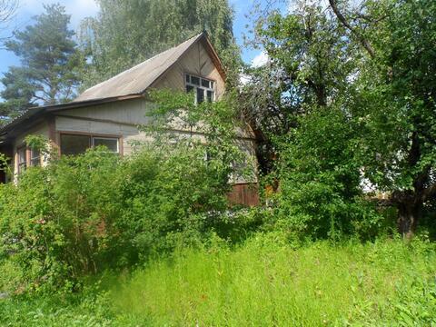Дача в сосновом лесу 50 км от мкада Носовихинское ш. д. Евсеево.