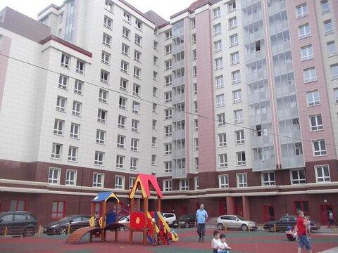 Новая квартира в Калипсо