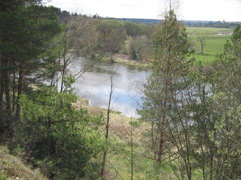 Недорогой участок У леса В стародачном месте одинцовский район