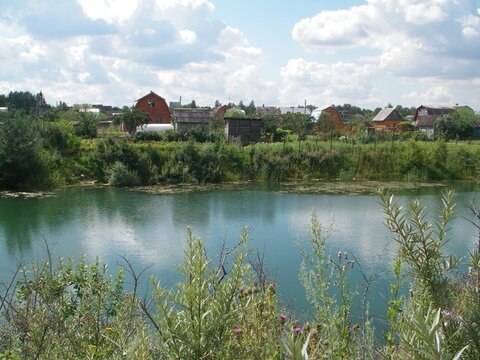 Кузнечики + 20 км, Скурыгино