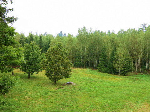 Волшебный участок 10 соток. Лес. Газ. Охрана. 47 км. от МКАД., 1700000 руб.