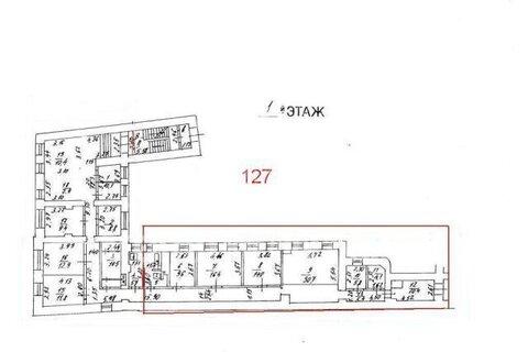 Предлагаем в аренду псн с отдельным входом общей площадью 127 кв.