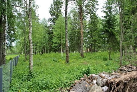 Лесной участок 24,8 соток для ИЖС рядом с Истринским вдхр 48км от МКАД
