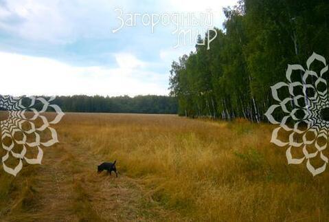 Симферопольское ш, 54 км от МКАД, Бершово