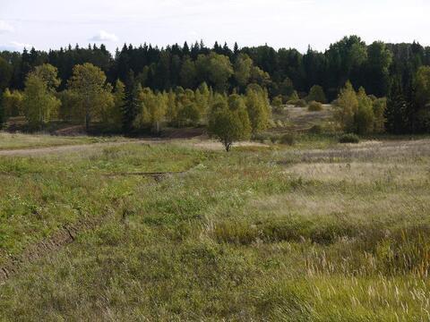 Полный адрес: МО, Клинский район, сельское поселение Петровское, дер