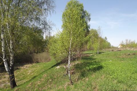 Участок 3,66 га, Перхушково.