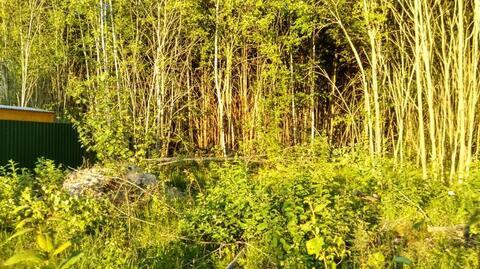 Земельный участок 11,2 сотки в СНТ «Ново-Карцево» в районе д.Новокарце