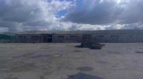 Продажа производственно-складских зданий 4770 м2, п. Михнево, .