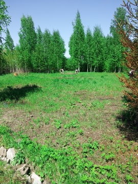 Участок в дачном поселке рядом с озером. 50 км от Москвы