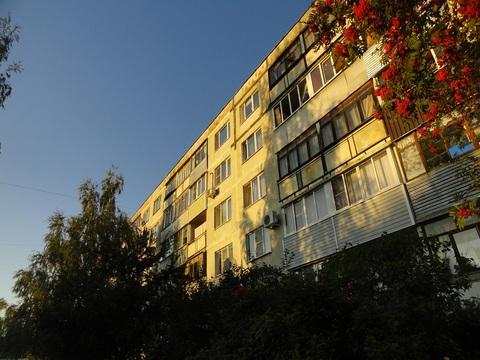 Квартира в п. Большевик
