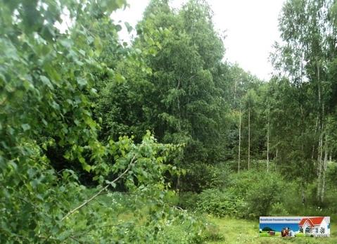 Лесной участок 12 соток, с выходом в лес, крайний, 110 км от МКАД.