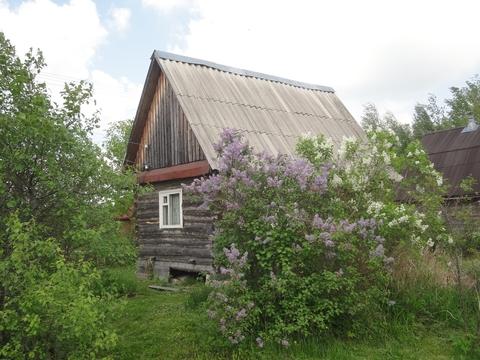 Домик в старом дачном поселке 50 км от Москвы по Горьковскому шоссе