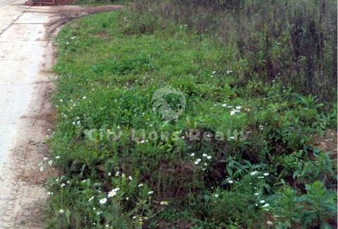 Пятницкое ш, 14 км от МКАД, Благовещенка. Отличный земельный участок