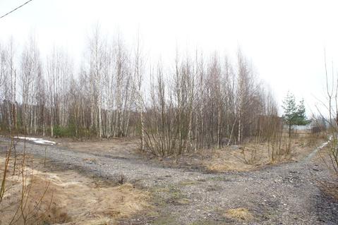 Лесной участок 20 соток д.Хоругвино СНТ Ветеран Вооруженных сил