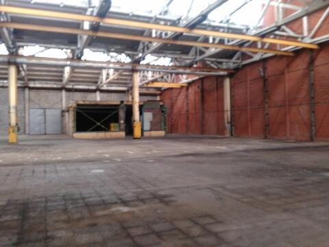 Производственное помещение 980 кв.м, кран-балка.