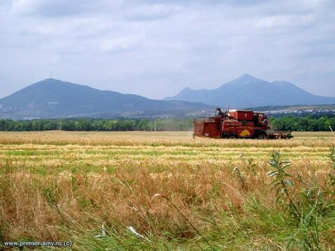 Земельный участок 38 соток (кфх), д.Воронино, 20000 руб.