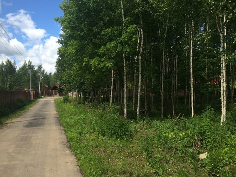Земельный участок в лесу, 10 соток, Киевское ш,