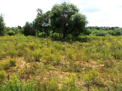 Земельный участок возле леса 9,5 соток д.Никульское (с.Остафьево)