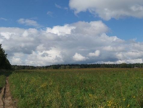 Новорижское ш. 125 км, участок 2 га, сельхозназначения