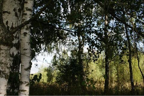 Назарьево, Рублево-Успенское ш, 23 км от МКАД. Участок правильной фор