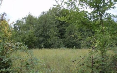Продается земельный участок 10 соток г. Наро-Фоминск, СНТ Камыши, 750000 руб.