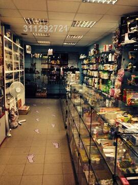 Предлагаются зальная площадь под магазин, только не продукты. Под маг-