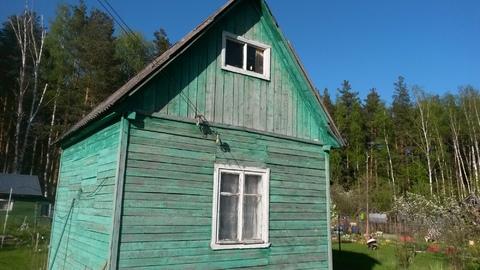 Участок с домиком у леса. 50 км по Носовихинскому шоссе.