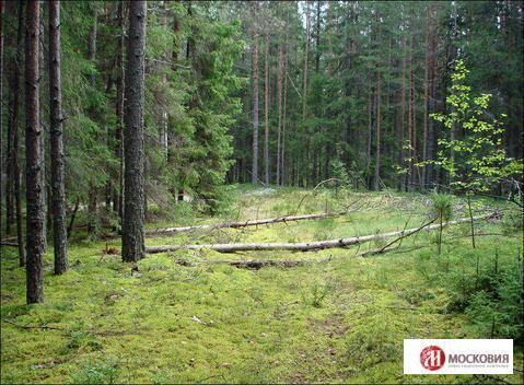 Земельный участок 17.23 сотки, ПМЖ, Новая Моква, 25 км. Калужское ш.