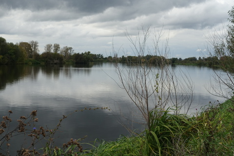 Участок у леса и озера