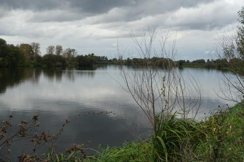 Участок у леса и озера, 315000 руб.
