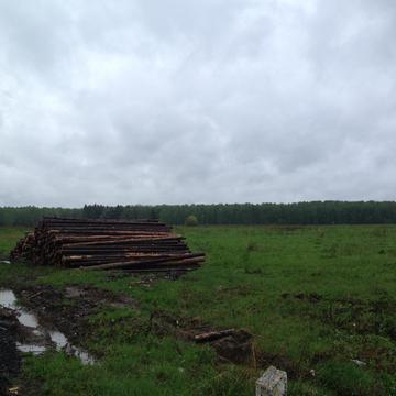 Земельный участок д. Большое Карасево