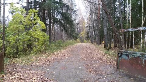 Участок 15 Га в 31 км по Ленинградскому шоссе для строительства