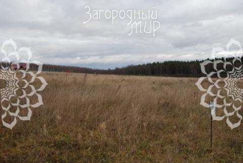 Участок в коттеджном поселке. Дмитровское ш, 39 км от МКАД, Никулино.