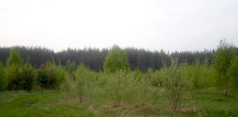8 сот Рыбхоз ИЖС в окружении леса до света 200м дорога инфраструктура, 150000 руб.