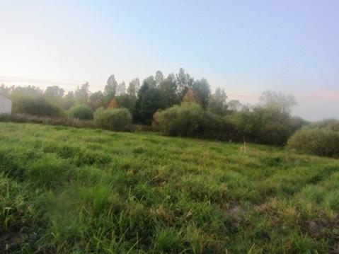 25 соток на Рузском водохранилище, д. Курово, Рузский район