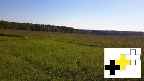 Участок 125 соток в д.Алексеевское ИЖС.