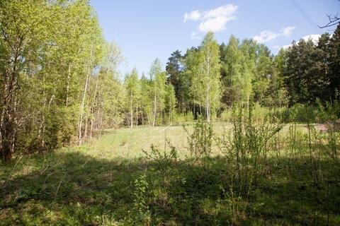 Участок на лесной полянке в 500м от центра села.
