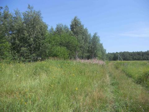 Участок 12 соток под ИЖС, 23 км. по Егорьевскому шоссе